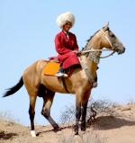 بررسی جایگاه اسب در ضرب المثل های ترکمنی