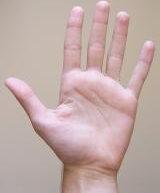 اسم انگشت های دست در زبان ترکمنی